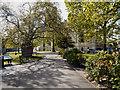 TR1557 : Canterbury Cathedral Precincts by David Dixon
