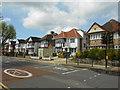 TQ2483 : The Avenue, Brondesbury Park : Week 22