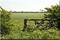 SK8852 : Beckingham farmland by Richard Croft