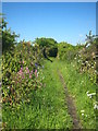 SW6230 : Public footpath at Wheal Vor by Rod Allday