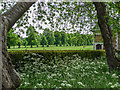 TL2308 : Garden, Hatfield House, Hertfordshire by Christine Matthews