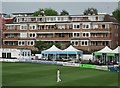TQ2905 : Watching cricket at Hove : Week 22