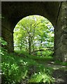 SK1184 : Through a railway arch at Barber Booth, Edale : Week 23