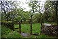 NU2406 : Viewpoint at Warkworth by Bill Boaden