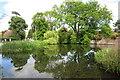 SP8619 : Wingrave village pond by Philip Jeffrey