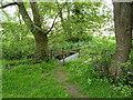 SJ8058 : A footpath on a bridge by Richard Law
