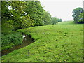 SJ7958 : A meadow and a stream below Betchton House by Richard Law