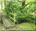 TQ5033 : Footbridge in Legg Wood by David Anstiss
