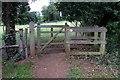 TL0535 : Footpath through Flitwick Moor by Philip Jeffrey