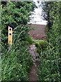 TL0340 : Marston Vale Trail by Philip Jeffrey
