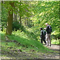 SU7589 : Walkers on the Chiltern Way by Graham Horn
