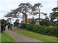 SP9554 : Wedding party at St Mary the Virgin, Carlton by Bikeboy