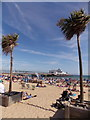 SZ0890 : Bournemouth: the pier between two palms by Chris Downer