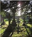 SX5356 : Crosses, Plympton St Mary by Derek Harper