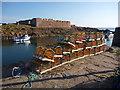 NT6879 : Coastal East Lothian : Early Morning at Broad Haven, Dunbar : Week 29