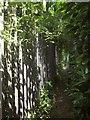 ST6172 : Monarch's Way, Avonside Industrial Estate by Derek Harper