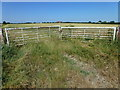 TL4679 : Field gates near Slade Farm, Witcham by Richard Humphrey