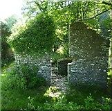 SX0888 : Ruined building near Trewitten by Maurice D Budden