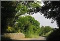 SX4262 : Road to Landulph Cross by Derek Harper