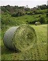 SX4263 : Bales south of Haye by Derek Harper
