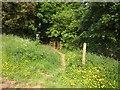SX4362 : Path approaching Coombe Creek by Derek Harper