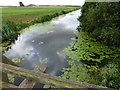 TL2384 : Great Raveley Drain at Jackson's Bridge by Richard Humphrey