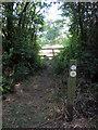 SP7028 : Path to Steeple Claydon by Philip Jeffrey