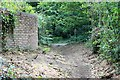 TQ1461 : Horse ride to Heath Road by Hugh Craddock