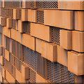 SJ8497 : Rust as a decorative feature : Week 32