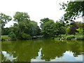 SP0783 : An August afternoon in Moseley Park (10) by Basher Eyre