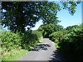 TQ4760 : Randle's Lane by Marathon