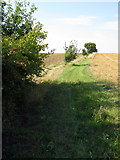 SP9747 : Footpath to the Newport Pagnell Road by Philip Jeffrey