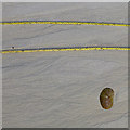 SV8808 : Yellow rope, pebble and dendritic sand patterns by David Lally