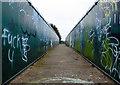 SJ5699 : Railway Bridge by Gary Rogers
