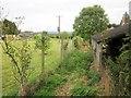 ST6924 : Monarch's Way near South Cheriton by Derek Harper