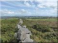 SW5037 : Drystone wall on Trink Hill by David Medcalf