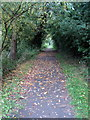 TL0648 : Ouse Valley Way by Priory Park by Philip Jeffrey