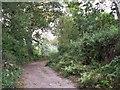 SJ9893 : Leylands Lane by Stephen Burton