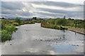 NS8679 : Union Canal near Tamfourhill by Anne Burgess