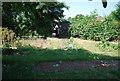 TQ3679 : Surrey Docks Farm by N Chadwick