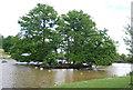 TQ5939 : Wooded island, Dunorlan Lake by N Chadwick