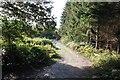 SJ5257 : Track to Pennsylvania Wood by Jeff Buck