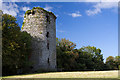 W8299 : Castles of Munster: Carrigabrick, Cork (1) by Mike Searle
