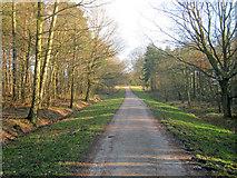 SK2670 : Track near the Emperor Lake by Trevor Rickard