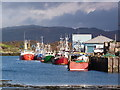 NR8668 : Fishing boats at Tarbert dock : Week 44