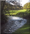 SX3261 : River Tiddy by Derek Harper