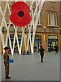 TQ3083 : Poppy appeal at King's Cross : Week 45