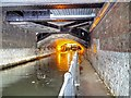 SJ8498 : Canal Tunnel Under Piccadilly by David Dixon