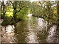 SX3565 : River Lynher by Derek Harper