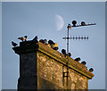 J5082 : Chimney, Bangor by Rossographer